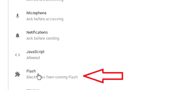 google chrome flash option